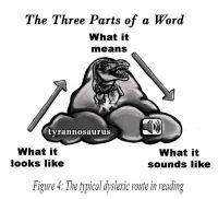 Chart, dyslexic reading path